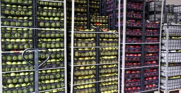 Yaş meyve sebze ihracatında Rusya lider