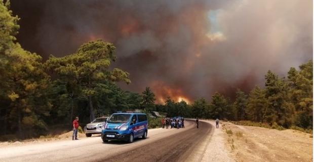 Orman yangınlarında son durum: Müdahale devam ediyor