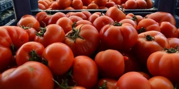 Rusya domates ve biber ithalatı kısıtlamasını kaldırdı