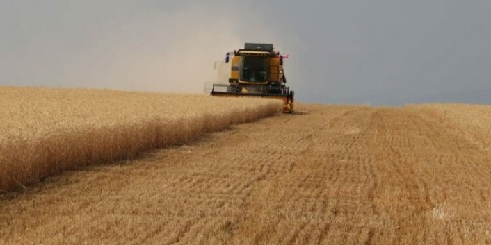 Tarım ÜFE'de yıllık artış yüzde 24,69