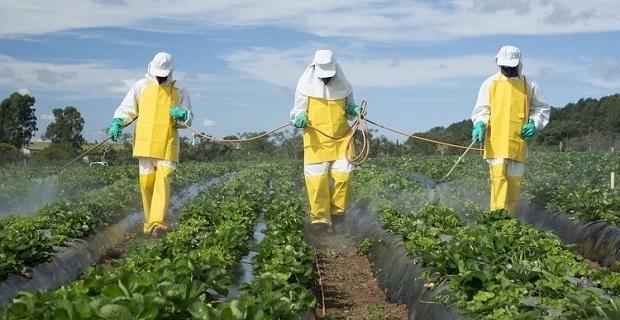 Türkiye tarımda pestisit ve kimyasal gübre kullanımını azaltacak