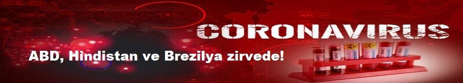 Dünya genelinde koronavirüs vaka sayısı 31 milyonu aştı