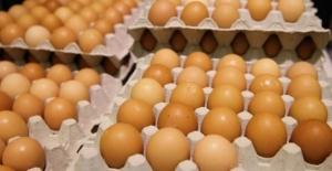 Yumurtada yeni uygulama yarın başlıyor