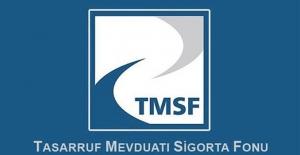TMSF, Cumhurbaşkanlığı ilgili kurumu oldu