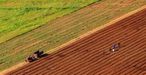 2019 tarımsal destek bütçesi belli oldu