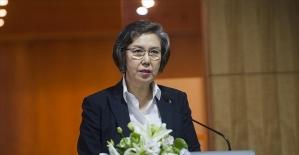 BM Özel Raportörü Arakan'daki şiddetten endişeli