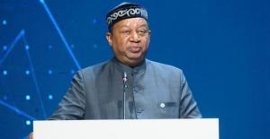 OPEC: Petrol stok kapasitesi mayısta dolabilir