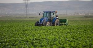 Sokağa çıkma yasağına rağmen tarımda üretim sürüyor