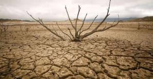 BM: Küresel sıcaklık artışının tehlikeli seviyelere ulaşabileceği uyarısında bulundu