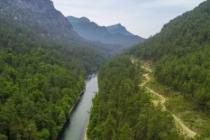 Sığla ormanları bilim insanlarını bekliyor
