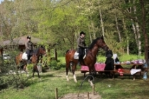 Belgrad Ormanları'na atlı koruma ekibi