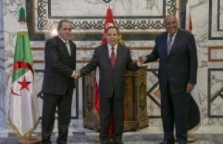 Libya'ya komşu ülkelerden 'siyasi çözüm'...