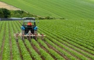 Tarımsal girdi fiyat endeksi yıllık yüzde 24,43...