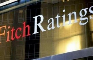 Fitch: Avrupa Merkez Bankasının kilit faiz oranları...