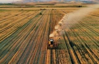 Tarımsal girdi enflasyonu yıllık yüzde 29,38 arttı