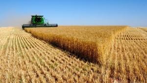 Sözleşmeli üretimle tarımda kalite artacak